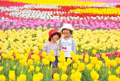 花観光農園