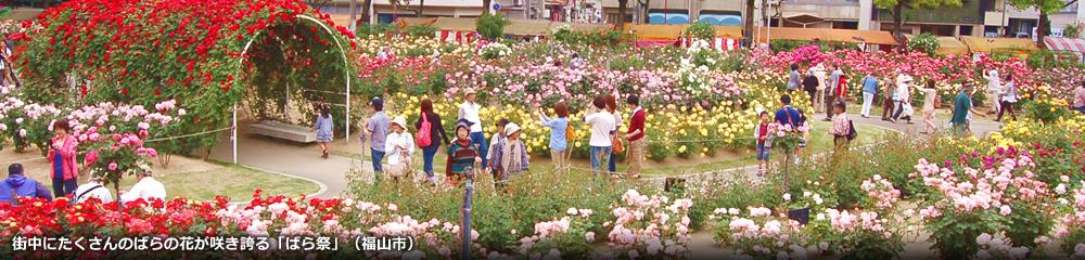 ばら祭り(福山市)