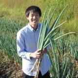 「せら農業体験」参加者募集中!