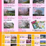 備後の「さくらスポット」&「花のイベント」情報!
